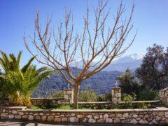 Viisi syytä matkustaa Kreetalle talvella