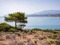Thodorou - Kreikan saari, jonne pääsee vain yhtenä päivänä vuodessa