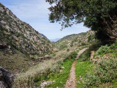 Patikointia Kreetalla: Sirikari-rotko (ja Polyrrinian muinainen kylä)