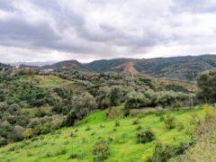 Harmaa talvipäivä Kreetalla, eikä mitään tekemistä?